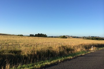 Early Nomad catches the view… and man, do I LOVE rolling hills, awesome