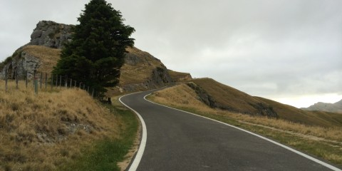 NZC - Rapha Ride